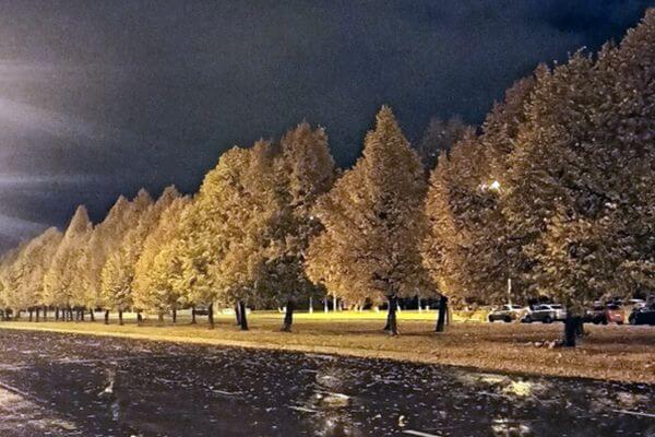 РЖД заплатит 120 тысяч рублей женщине, которая попала под электровоз в Сызрани   CityTraffic