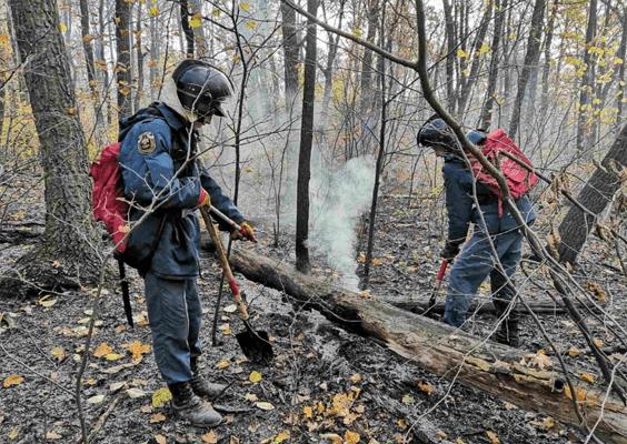 В Самаре вечером в субботу 58 человек тушили лесной пожар возле горы Барсук | CityTraffic