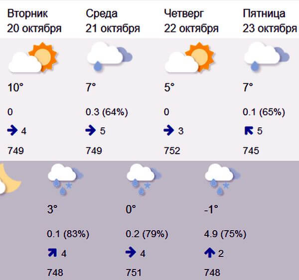Гидрометцентр обещает дождь со снегом в Самарской области | CityTraffic