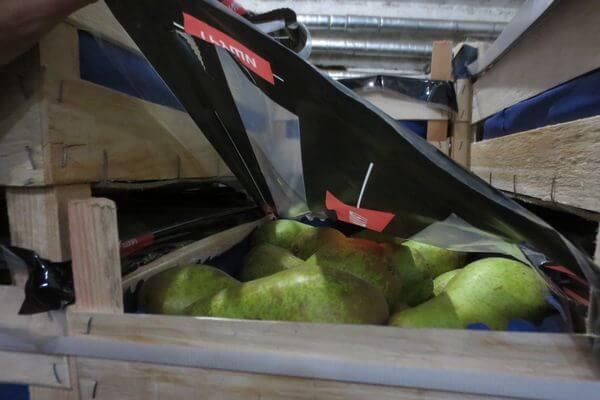 Самарские таможенники нашли на рынке в Оренбурге 611 кг нелегальных груш | CityTraffic