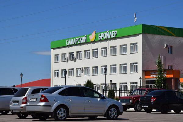 По количеству новых случаев COVID-19 в регионе лидируют Самара и Сызрань | CityTraffic