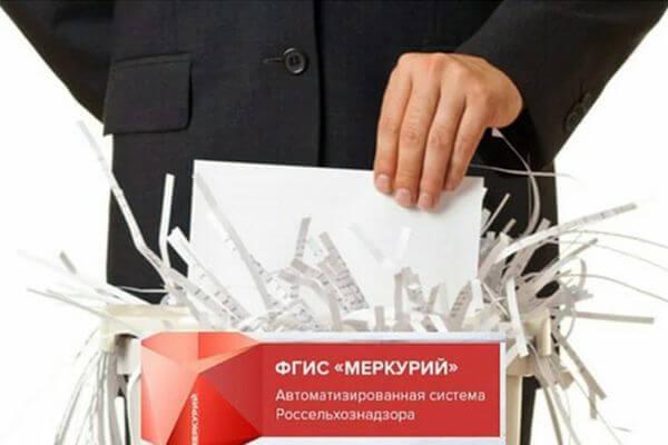 Призрачные мед, молоко и яйца производила фирма из Самарской области | CityTraffic