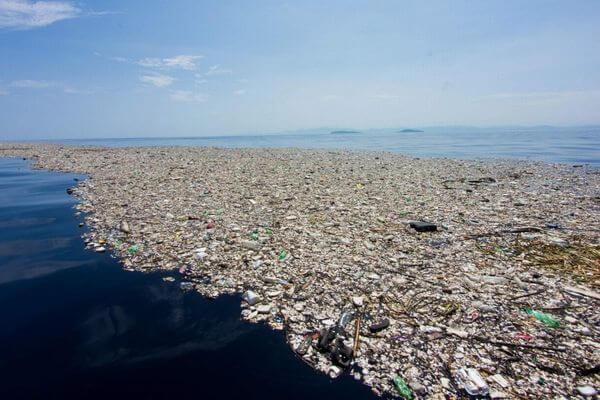 Экологи: к 2050 году в мировом океане будет больше пластика, чем рыбы | CityTraffic