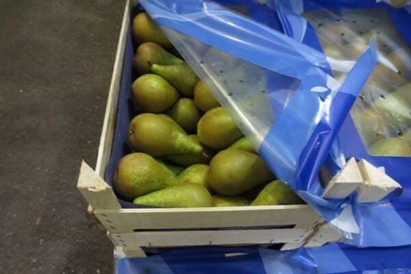 Почти 19 тонн санкционных фруктов, сыра и куриных бедер изъяли таможенники Самары за год | CityTraffic