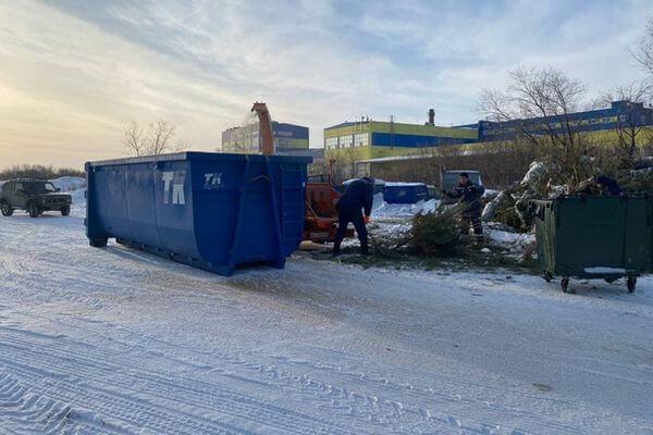 В Самарской области приступили к переработке новогодних ёлок | CityTraffic