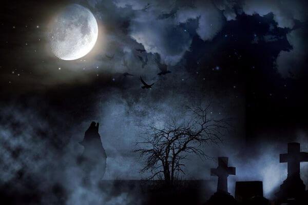 На кладбищах в Самарской области не было табличек, запрещающих приходить сюда детям ночью одним | CityTraffic
