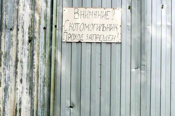 Скотомогильник в Самарской области обнесли забором по требованию приставов | CityTraffic