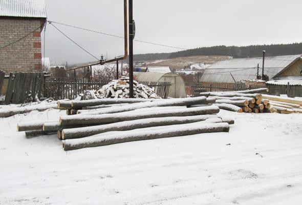В Самарской области сельский житель незаконно срубил в лесу 54 дерева | CityTraffic