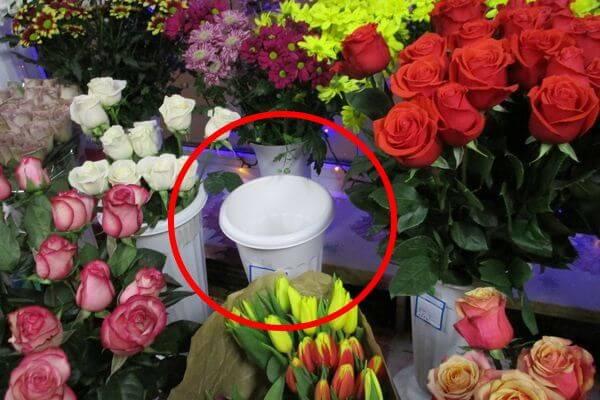 Житель Тольятти похитил розы на несколько тысяч рублей и раздавал их женщинам | CityTraffic