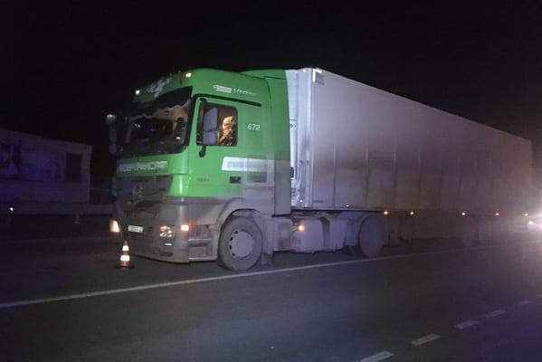 На трассе М-5 в Самарской области грузовик насмерть сбил пешехода | CityTraffic