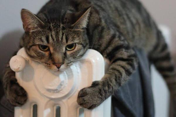 В домах Тольятти отключать отопление начнут с 15 апреля | CityTraffic