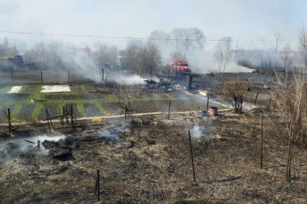 Пожар в дачном массиве Самарской области начался из-за неосторожного обращения с огнем | CityTraffic