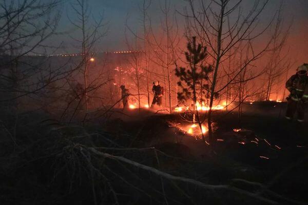 В Тольятти 109 человек 7 часов тушили пожар в Зеленой зоне | CityTraffic