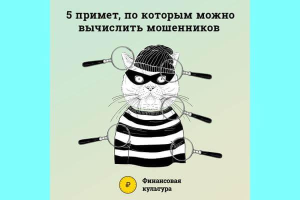 Полиция и Центробанк назвали 5 признаков, которые говорят о том, что вам звонит мошенник   CityTraffic