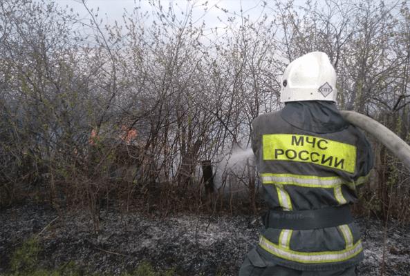 Возле села Воскресенка более 100 человек тушат 10 горящих дачных строений и сухую траву | CityTraffic