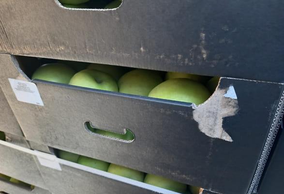 В РФ из Казахстана пытались ввезти 20 тонн санкционных яблок | CityTraffic