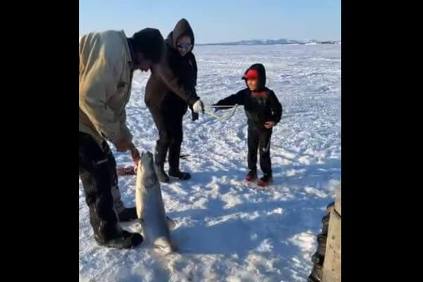 Шестилетний мальчик поймал рыбу ростом с себя | CityTraffic