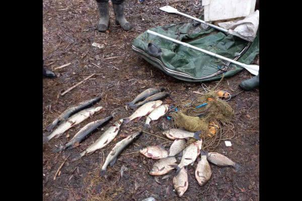 На пенсионера из села Пионер завели уголовное дело за незаконную рыбалку | CityTraffic
