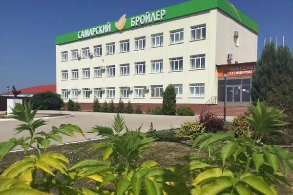 Тимашевскую птицефабрику оштрафовали за долги по зарплате перед рабочими | CityTraffic