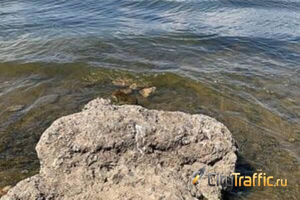 Вода у берегов Тольятти разогрелась до рекордной температуры | CityTraffic