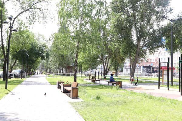 Депутаты Самары предложили бесплатно раздавать в скверах и парках пакеты для собачьих экскрементов | CityTraffic