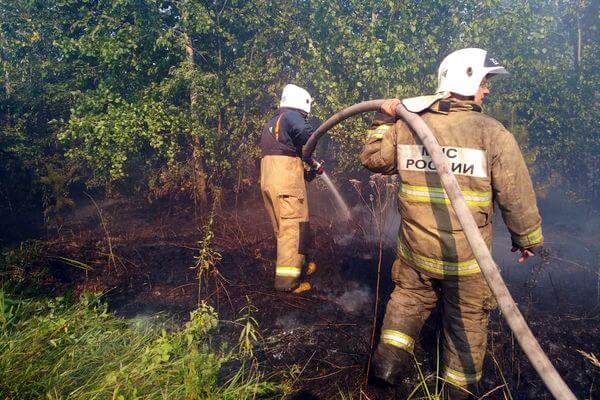 Лесной пожар в Тольятти тушат на площади 153 га | CityTraffic