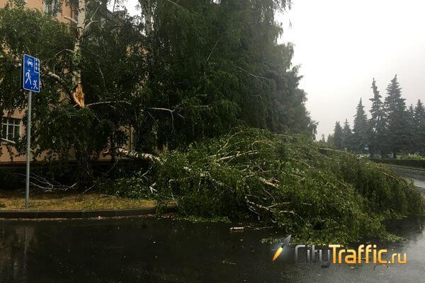В Комсомольском районе Тольятти от сильного ветра рухнул строительный кран   CityTraffic