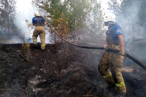 Лесной пожар в Тольятти рассчитывают потушить к концу дня 12 июля | CityTraffic