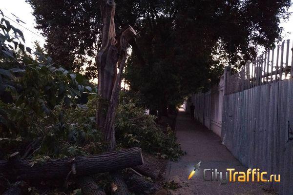 В Тольятти устранили нависшую над пешеходной дорожкой угрозу