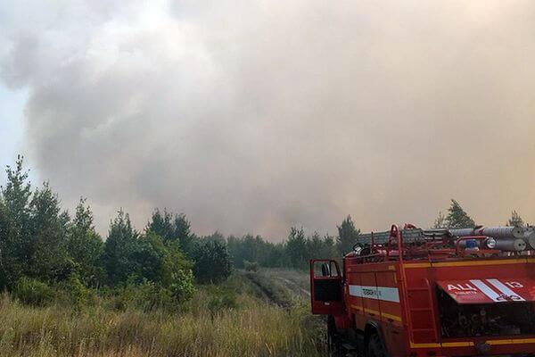 Объявлена полная ликвидация лесного пожара в Тольятти | CityTraffic