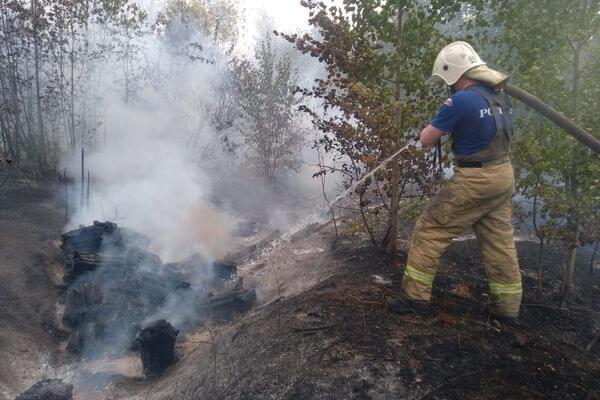 Лесной пожар в Тольятти: огнем пройдено 35 га | CityTraffic