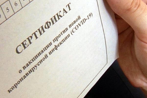 Поддельные сертификаты о вакцинации выявляются при сканировании QR-кода | CityTraffic