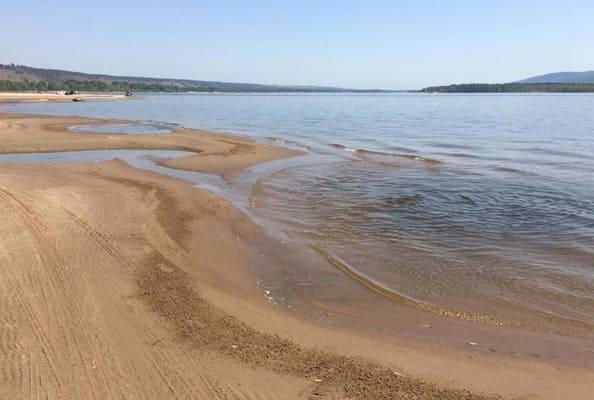С пляжей Тольятти убрали погибшую рыбу