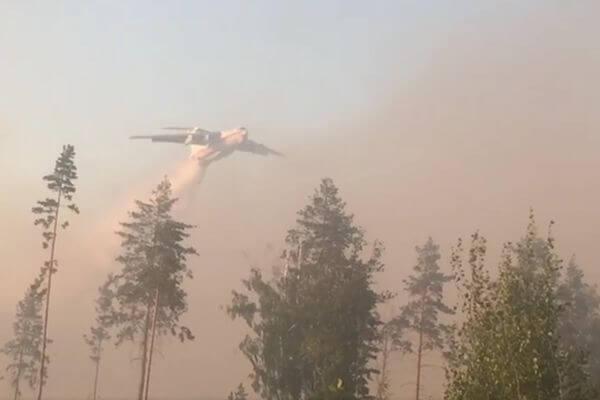 Площадь лесного пожара в Тольятти увеличилась до 4 га | CityTraffic