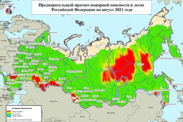 Рослесхоз прогнозирует повышение пожароопасности в лесах Самарской области в августе | CityTraffic