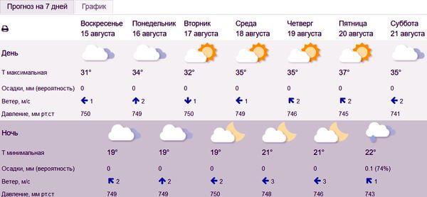Рабочая неделя разогреется до плюс 37 градусов в Самарской области | CityTraffic