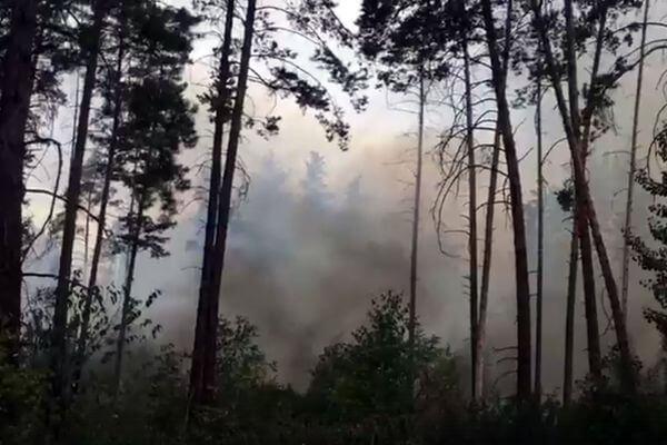 В Тольятти снова горит лес, авиация сбросила 70 тонн воды | CityTraffic