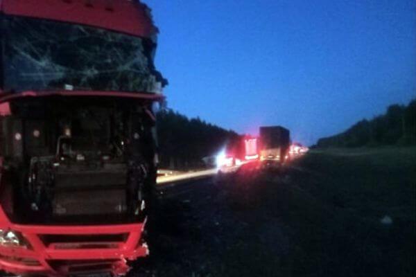 Три грузовика столкнулись на трассе М-5 в Самарской области, пострадали два водителя | CityTraffic