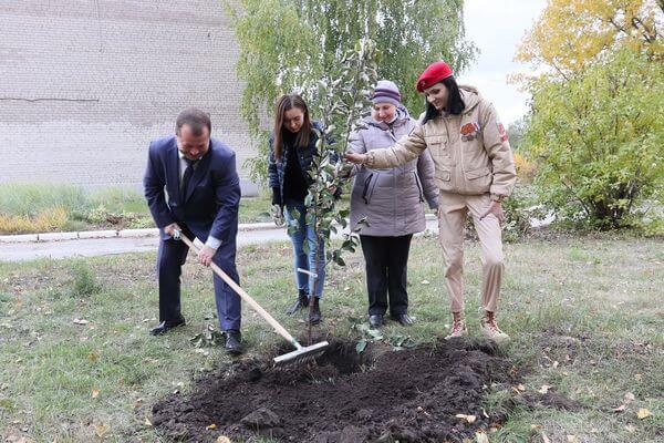 В школьных дворах Самары появилось 1500 саженцев яблонь | CityTraffic